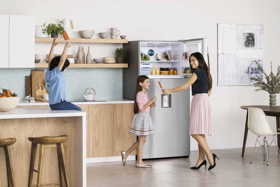 Samsung Twin Cool Refrigerator (2)